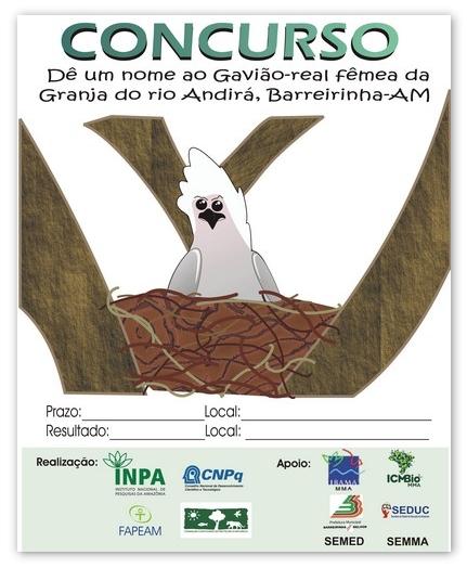 Cartaz Concurso Nomeie Gavião-real