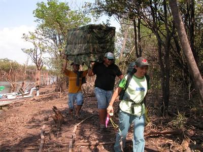 Devolução de gavião-real reabilitado. Nhamundá, AM. 2006.