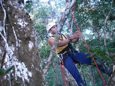 Curso Dossel Manaus, 2006.