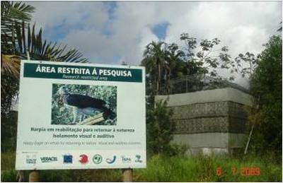 Recinto de reabilitação aves de rapina Mata Atlântica.